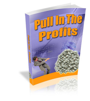 Pull In The Profits PLR